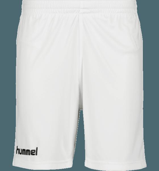 Hummel M Core Poly Shorts