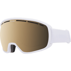 272303103101 EVEREST VISION GOGGLE Standard Small1x1 ... 2fe4cddb3d79a